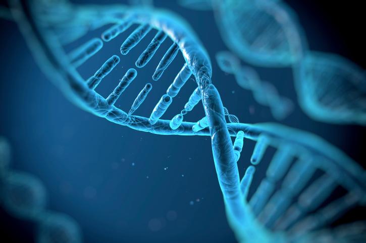 Генетики научились очищать геном человека от ВИЧ