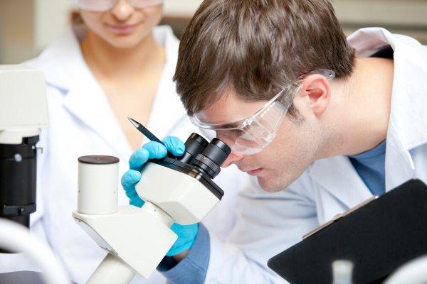 Испанские ученые выяснили, от чего зависит успех лечения ВИЧ