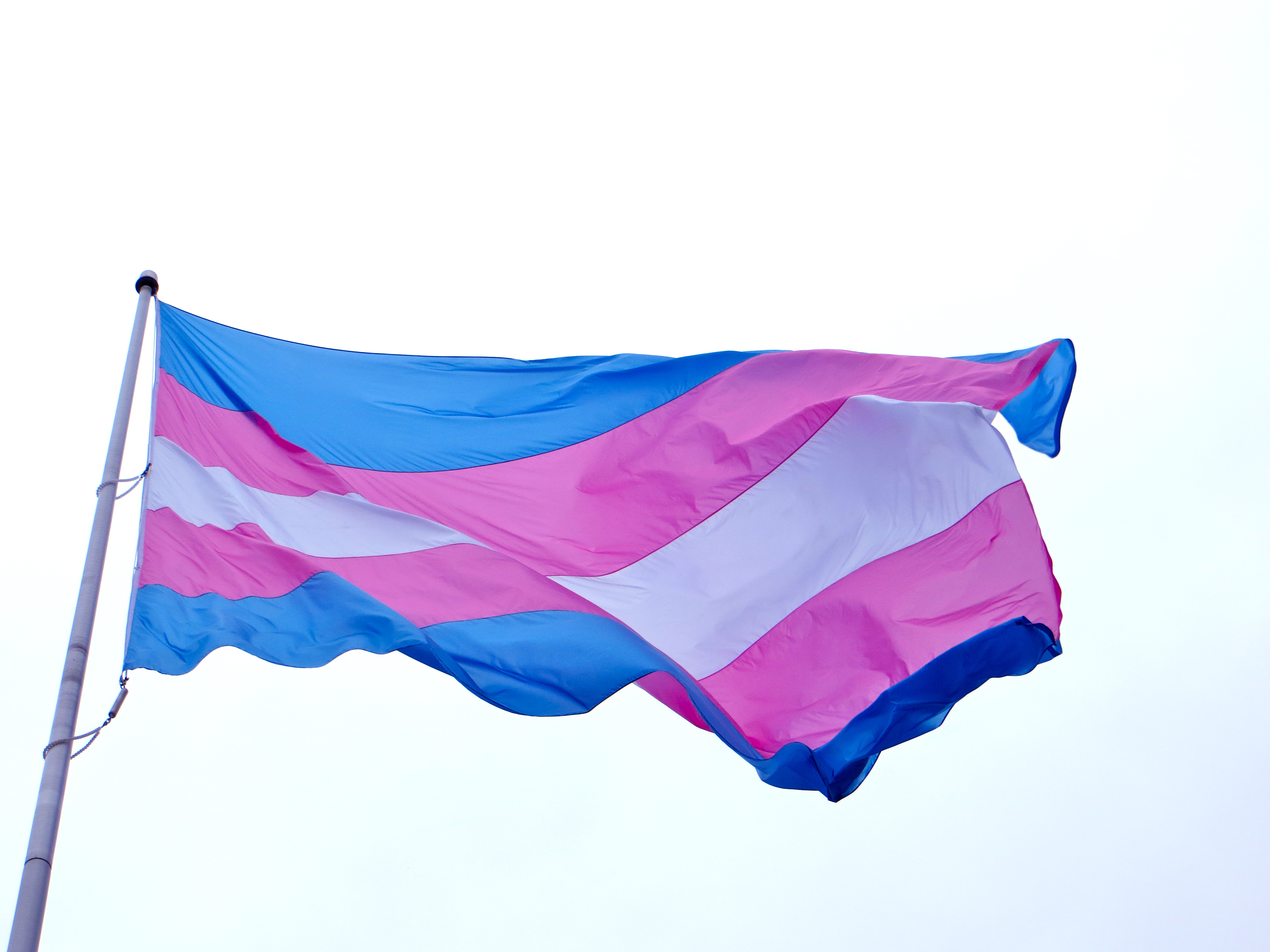 Конгресс штата Калифорния принял закон, защищающий права трансгендеров в учебных заведениях