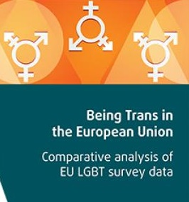 Доклад ЕС: около половины трансгендеров регулярно подвергаются насилию