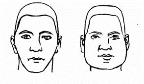 Науковці з'ясували, що сексуальна орієнтація чоловіка залежить від форми обличчя